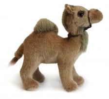 Верблюд одногорбый, 18 см.
